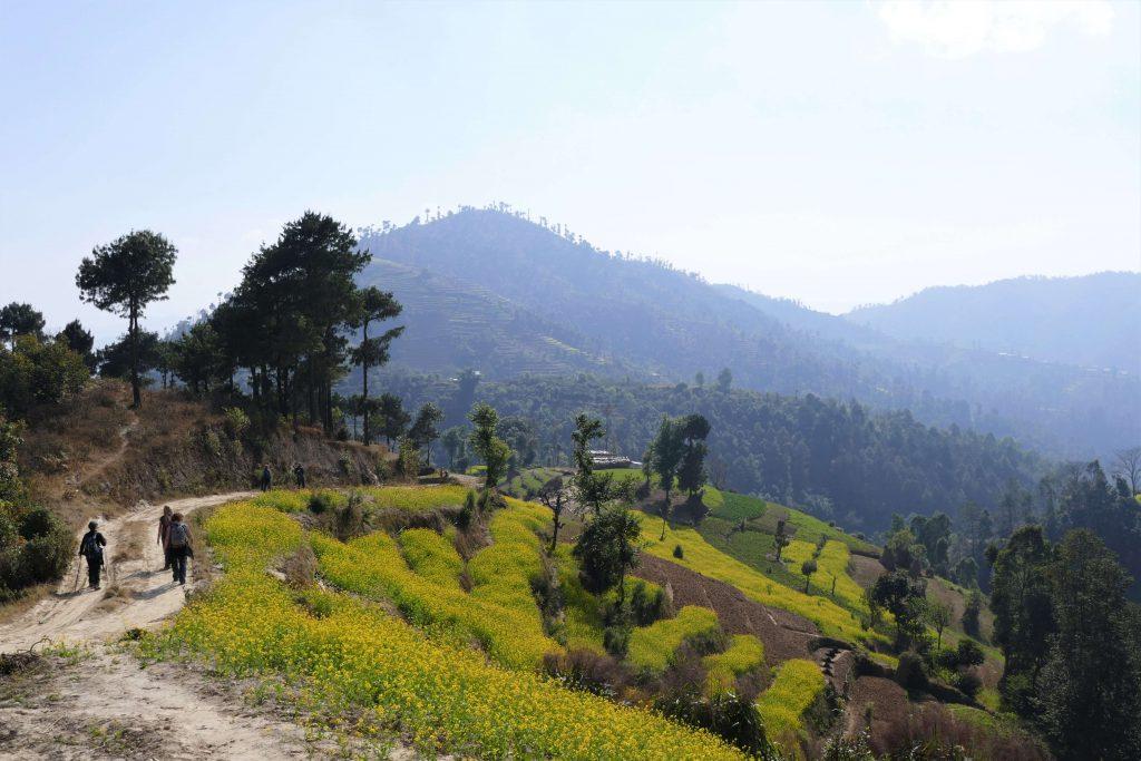 Kathmandu vallei trekking - wandelen doorheen de velden