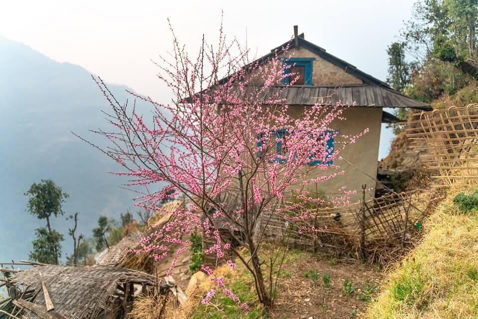 Pikey Peak trekking – typisch Nepalees huis tijdens de Pikey Peak trekking