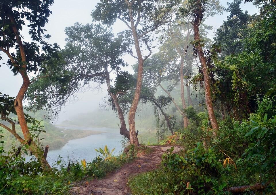 Safari in het Zuiden van Nepal – de jungle van Chitwan national park (2)